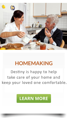 Caregiver serving simple and healthy meals to the elderly lady